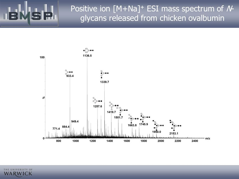 Positive ion [M+Na]+ ESI mass spectrum of N-glycans released from chicken ovalbumin